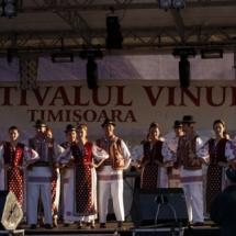 festivalul-vinului